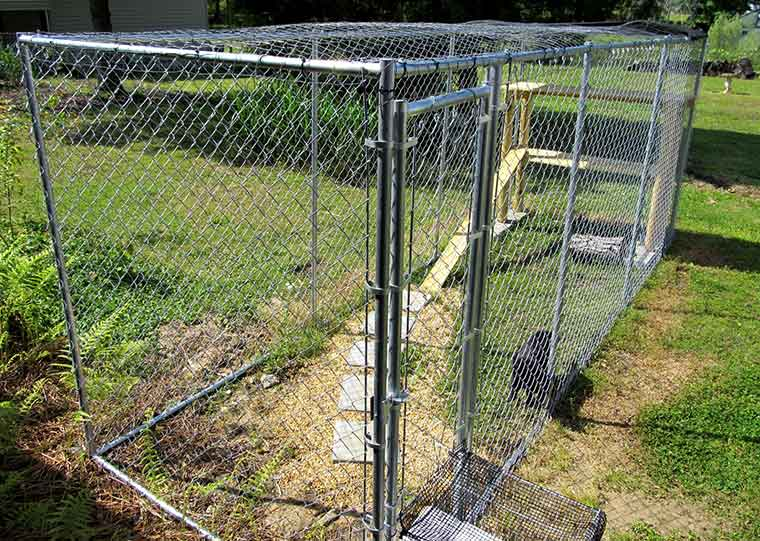 diy outdoor cat enclosure cage home hints