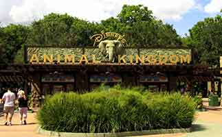 Entrance to Disney Animal Kingdom