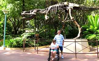 T-Rex skeleton at Disney Animal Kingdom